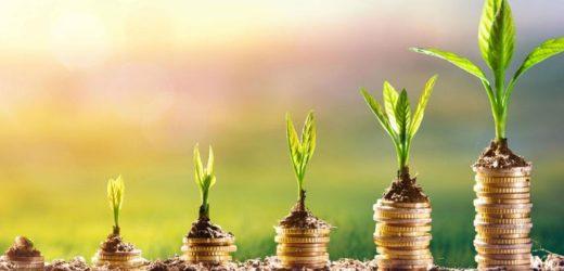 Dans quoi investir pour fructifier son épargne ?